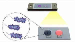 New biosensing platform could quickly and accurately ...