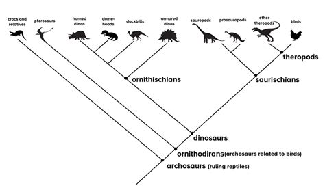 figure   dinosaurs walked