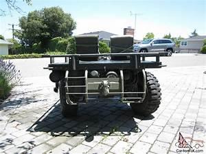 Brunswick Military Mule