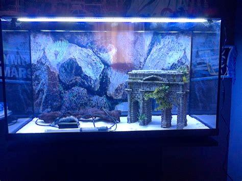 re eclairage aquarium croquis du futur aquarium