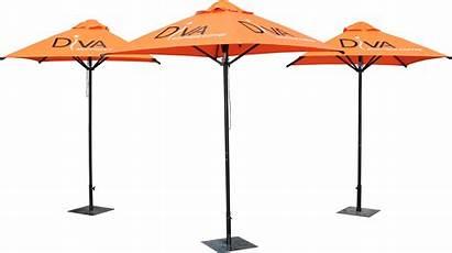 Umbrellas Cafe Outdoor Diva Cafe Branding Staroutdoor