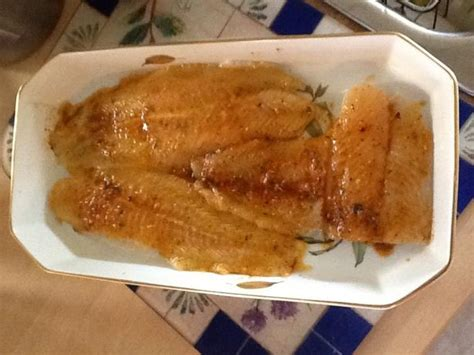 grouper baked parmesan recipes creole recipe fish food dishes