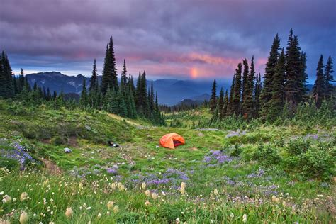 mount rainier national park   glaciated peak