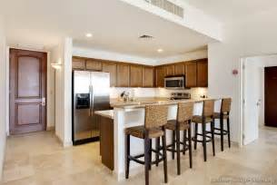 pictures of kitchens traditional medium wood cabinets golden brown page 3 - Kitchen Bar Counter Ideas