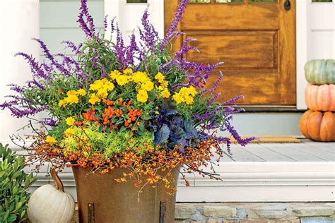 fall container planting ideas fall container gardening ideas southern living