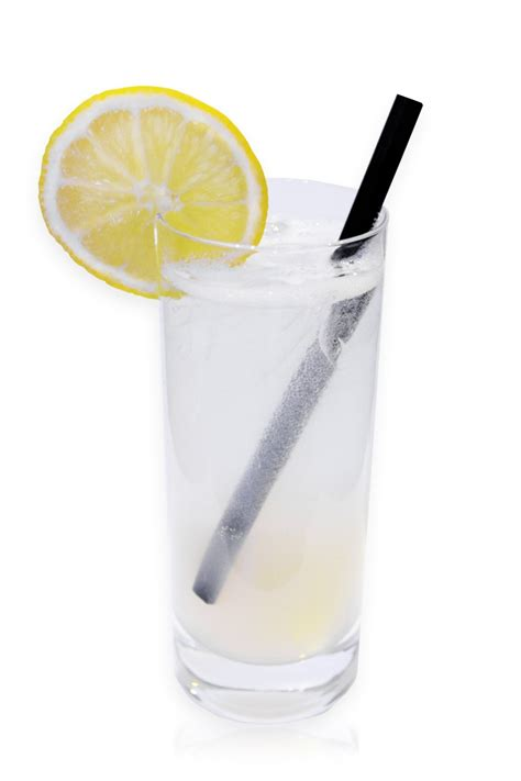 gin cocktail frozen gin fizz recipe dishmaps