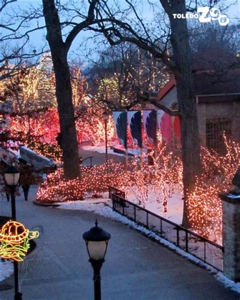 17 best images about toledo zoo on before