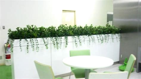 Planter Boxes - Manapat Interior Landscape Designs