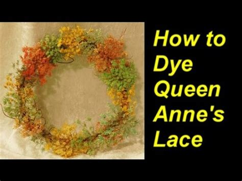dye queen annes lace  food coloring youtube