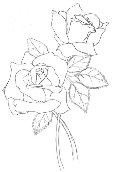 rose outline   clip art  clip art
