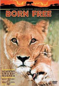 Borne Free Lyon : born free dvd and soundtrack lion king ~ Medecine-chirurgie-esthetiques.com Avis de Voitures
