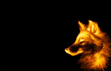 Black Wolves Cool Backgrounds