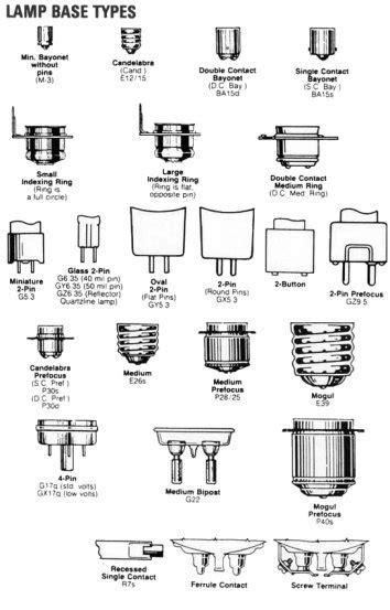 light bulb types and sizes l base types popideas