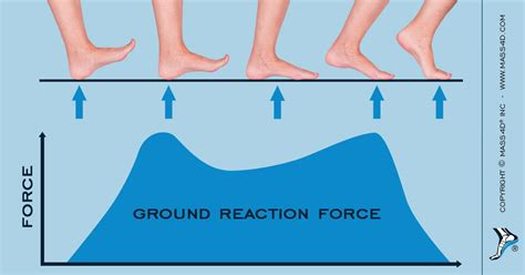 How Ground Reaction Forces Affect Gait - MASS4D® Insoles ...
