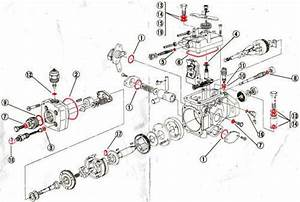 Total Overhaul Fuel Pump Kit Shogun Pajero Delica 2 8  U0026 2
