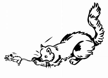 Mouse Cat Chasing Clipart Catching Chase Dog