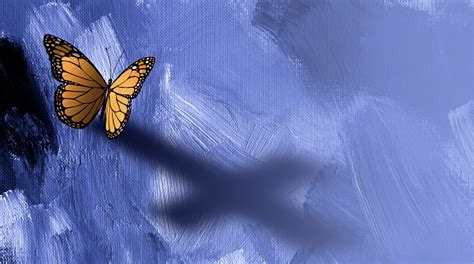 graphic butterfly  cross shadow background stock