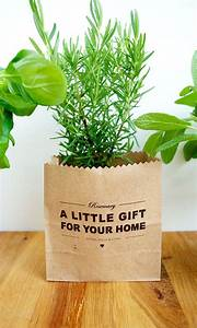 The best plants for housewarming gifts The joy of plants