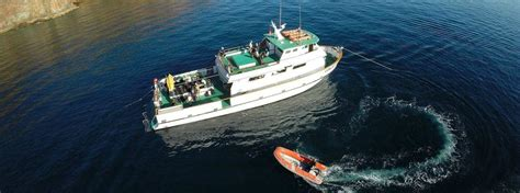 breaking news  missing  california dive boat fire