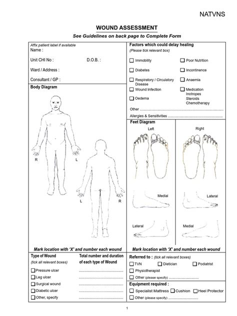 Wound Assessment Diagram wound assessment chart pdf wound allergy anatomy labelled