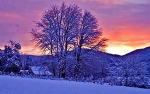 23 Winter Sunset Snow Trees Landscape Wallpaper, Nature ...