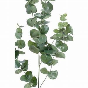 Eucalyptus Plante D Intérieur : eucalyptus artificiel 136 feuilles 90cm sur branche mat riel mur v g ~ Melissatoandfro.com Idées de Décoration