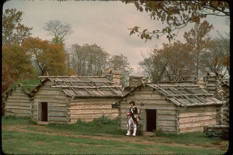 Valley Forge National Historical Park Vafo4636.jpg Tesco Christmas Trees Tree Shops In Florida Blow Up Colour Ideas Stay Lit Artificial With Lights Ge