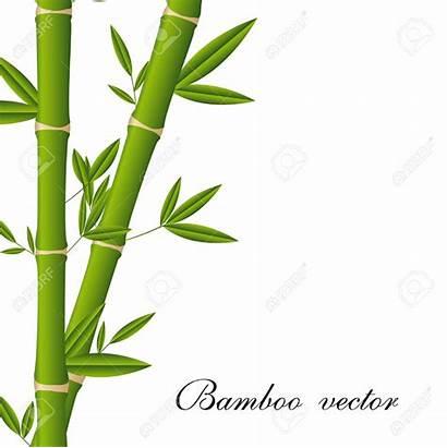 Bamboo Clipart Vector Tree Poles Clip Leaf