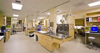 emergency animal clinic dovelewis emergency animal hospital mackenzie