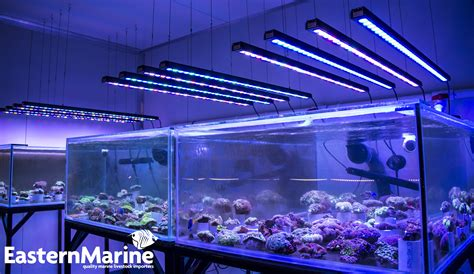 Bar Lighting by Orphek Or 120 Bar Led Bars At Easternmarine Aquariums