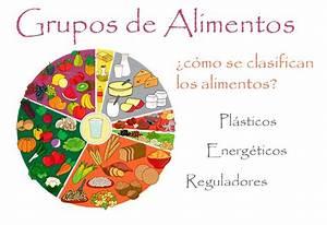 Grupos Alimenticios ⇒ ¿Cómo se clasifican los alimentos?