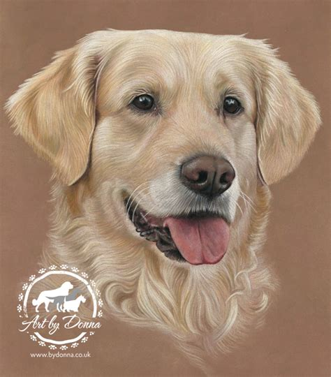 Pet Portraits And Animal Art By Uk Artist Donna Dog