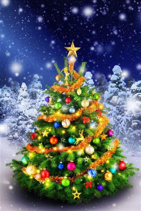 fondos de pantalla hermoso arbol de navidad en el invierno