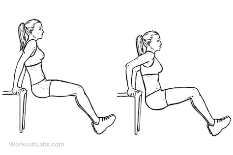 Dips Chaise Pectoraux by Chair Bench Tricep Dips Workoutlabs