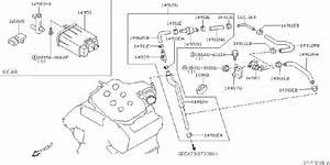 Infiniti M45 Tank Vacuum  Valve Vacuum Delay  Rear  Engine