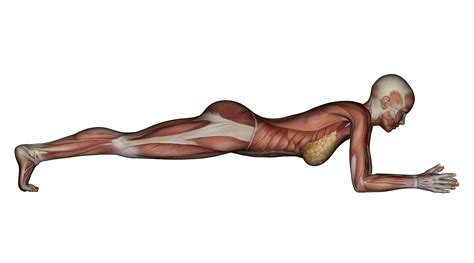 How To Do A Plank (do This Tweak For Tighter Abs)