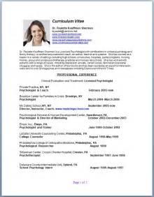 Professional Cv Resume Cv Template Examples
