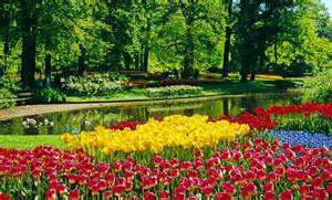 pic flower garden holland cruise from the heart of amsterdam to the biggest bulb flower garden in the world