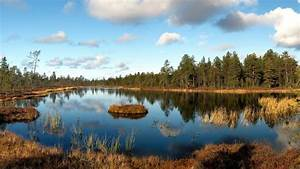 Landscape, Wood, Grass, Faded, Lake, Autumn, Island, Shadows, Wallpaper, Hd, Wallpapers13, Com