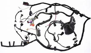Bay Ecu Wiring Harness 2001 Vw Beetle - 1 9 Tdi Alh