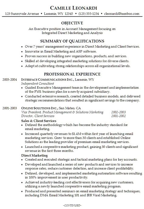 professional summary  resume project scope template