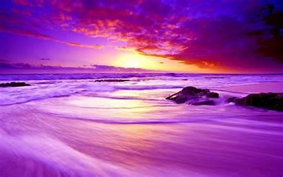 Sunset Purple Wallpaperaccess Wallpapers