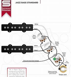 Fender American Jazz Bas Wiring Diagram