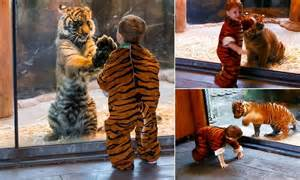 real life calvin finds  hobbes heart melting video