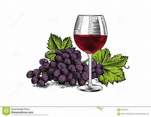 Glass of red wine stock vector. Illustration of food ...