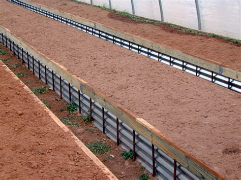 Permanent Raised Bed Gardening Corrugated Sheet Metal