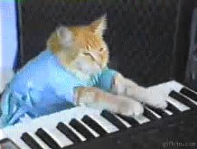 keyboard cat the daily geekette national cat appreciation day post