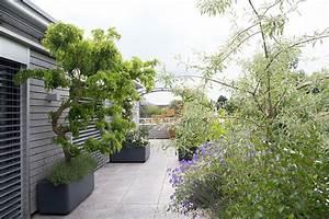 Pflanzen Sichtschutz Terrasse : terrassengestaltung raschle blumen pflanzen garten ~ Sanjose-hotels-ca.com Haus und Dekorationen