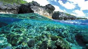 Niue Vacations 2017: Explore Cheap Vacation Packages - Expedia Niue