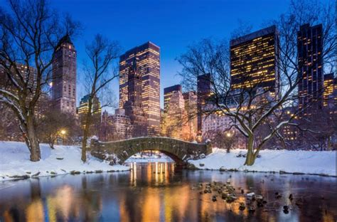 winter activities in new york city superior tours